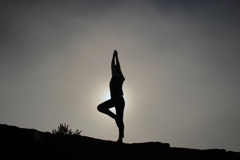 shadow yoga